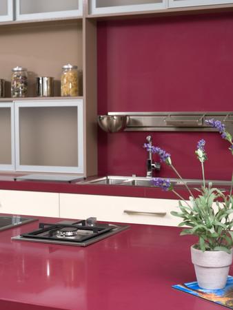 kitchen furniture: Detail of kitchen furniture