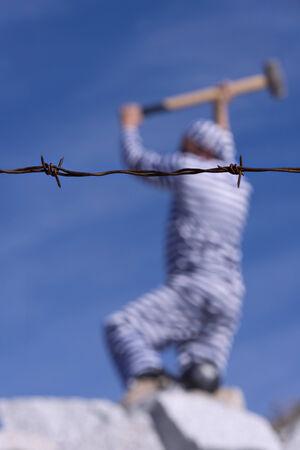 prisoner: Prisoner