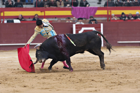 Bullfighter in a bullring photo