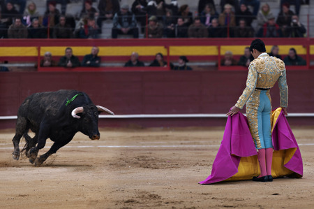 spanish ethnicity: Bullfighter in a bullring