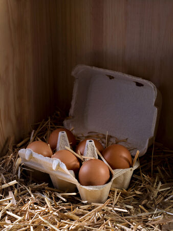 henhouse: Close-up of a box full of eggs in a henhouse