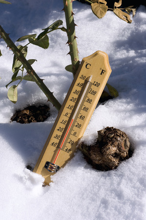 deep freeze: Thermometer on snow Stock Photo