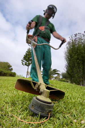 reaping: Man reaping the grass