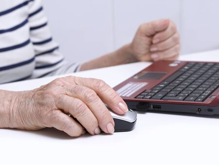 silver surfer: Elderly person using a laptop
