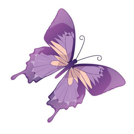 Der Schmetterling auf einem weißen Hintergrund. Vektor