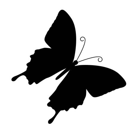 black butterfly: silhouette of butterfly on a white background.vector