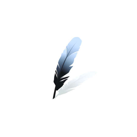 Black feather on a white background.vector photo