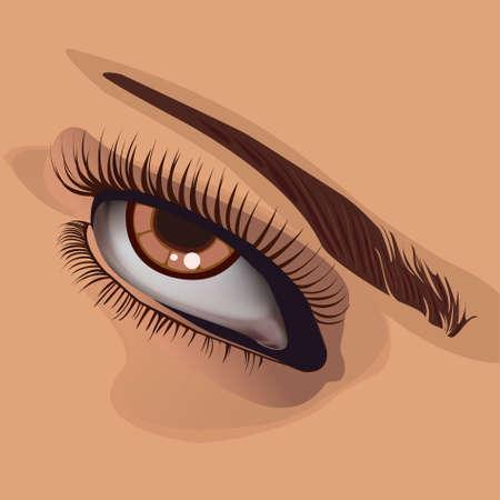 corporal: Human eye and eyebrow on corporal colour.vector