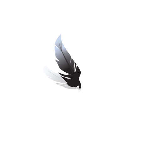 Black feather on a white background.vector Stock Photo - 5849167