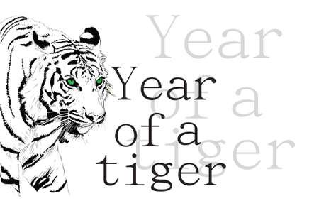 The Amur tiger on a white background.Vector illustration illustration