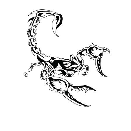 escorpio: Es negro un escorpi�n blanco sobre un fondo blanco.  Foto de archivo