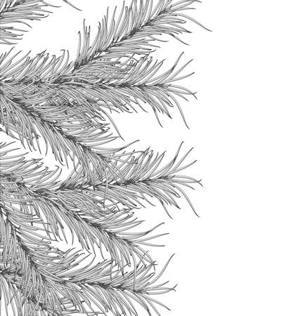pine decoration: New Year