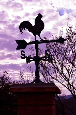 puntos cardinales: Gallo estatua de metal con el viento debajo de la indicación