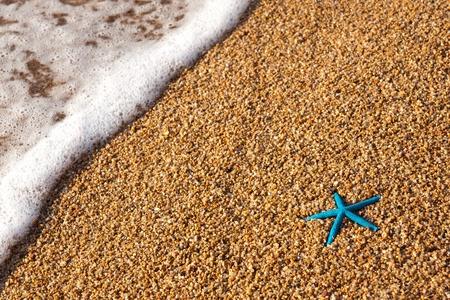 Blue starfish sulla spiaggia t alba con mare onda Archivio Fotografico - 12991975