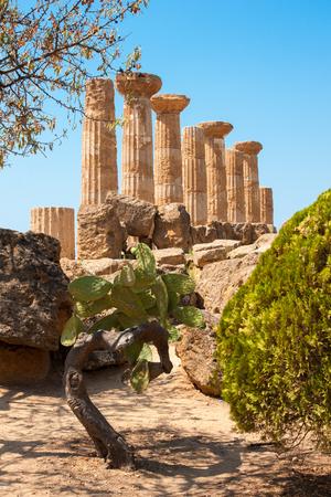 Le rovine del tempio di Ercole nella valle dei Templi, Agrigento, isola di Sicilia, Italia Archivio Fotografico - 23871829