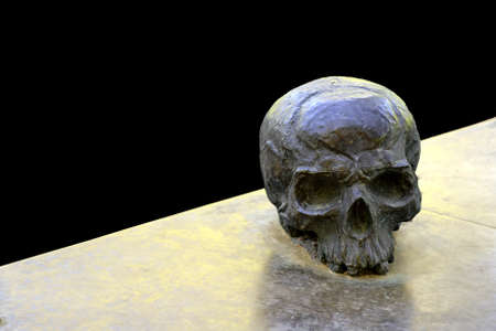 human skull on a black background as a blank for text Stock Photo - 15274912