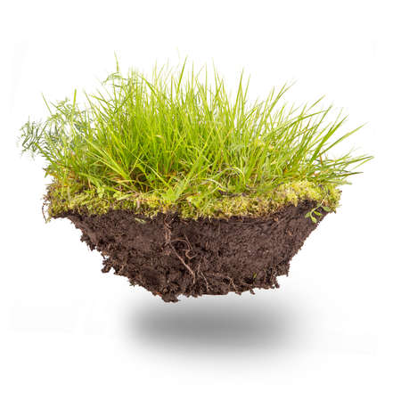 green grass with earth isolated on white background Stock Photo