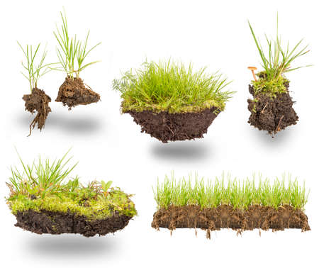 白い背景に分離された地球と緑の草を設定します。 写真素材