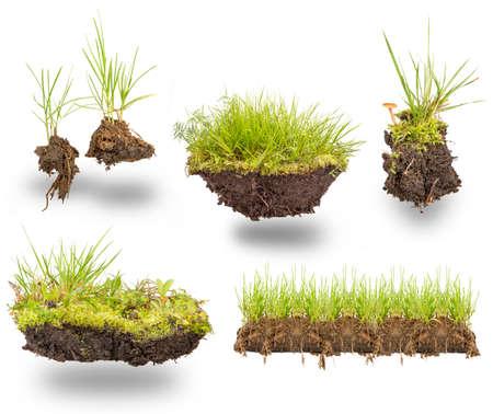 흰색 배경에 고립 지구와 녹색 잔디를 설정 스톡 콘텐츠
