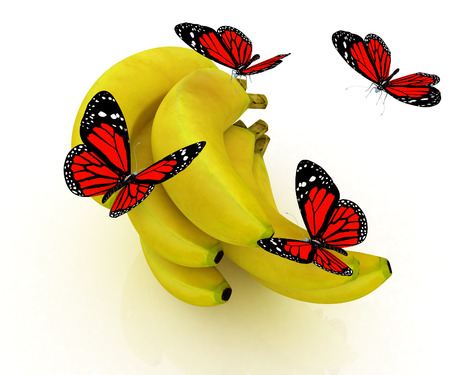 Red butterflys on a bananas on a white background  photo
