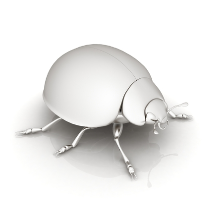 Metall beetle on a white background photo