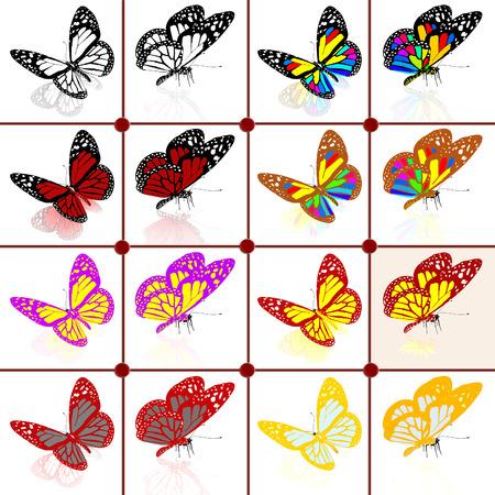 botanika: Motýli botanika set