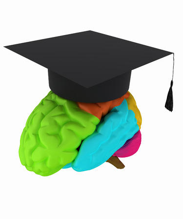 graduation hat on brain photo
