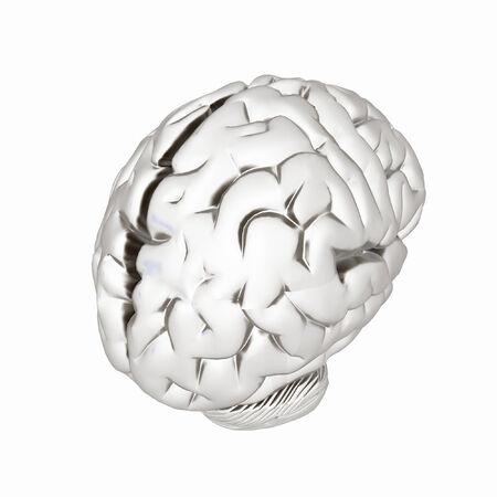 metall: Metall human brain Stock Photo