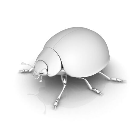 metall: Metall beetle on a white background Stock Photo