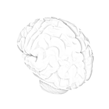 mentality: Human brain
