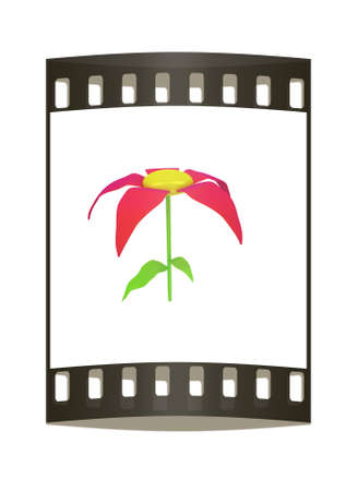 potting soil: Flower icon on a white background. The film strip