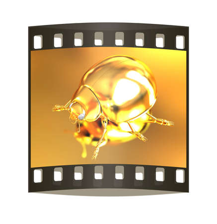luxo: besouro dourado em um fundo do ouro. A tira de filme