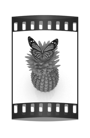 butterflys: Red butterflys on a pineapple on a white background. The film strip Stock Photo
