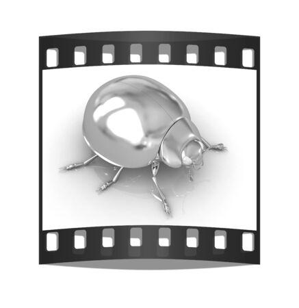 splendor: golden beetle on a white background. The film strip Stock Photo