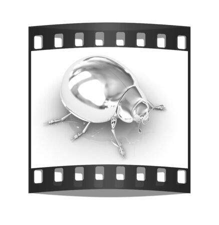 Chrome beetle on a white background. The film strip photo
