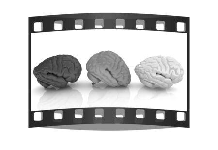 mentality: Human brains. The film strip