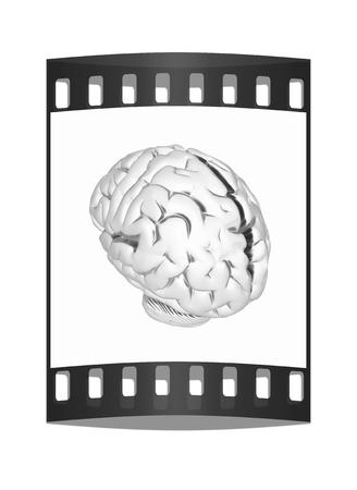 metall: Metall human brain. The film strip