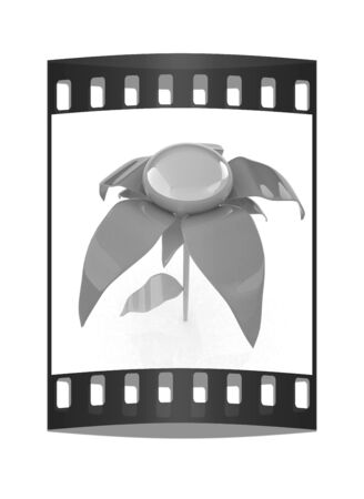 potting soil: Flower icon 3d. The film strip