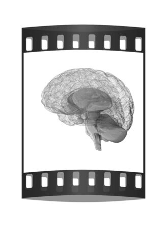 mentality: Creative concept of the human brain. The film strip Stock Photo