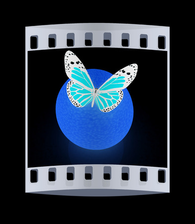 butterflys: butterflys on a oranges on a black background. The film strip