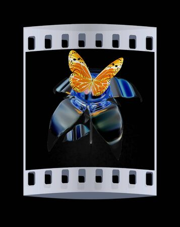 butterflys: butterflys on a chrome flower with a gold head on a black background. The film strip Stock Photo