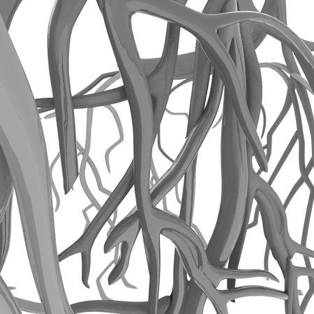 veins: Fantasy veins. Medical illustration