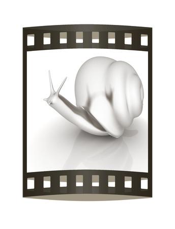 slow food: 3d fantasy animal, snail on white background