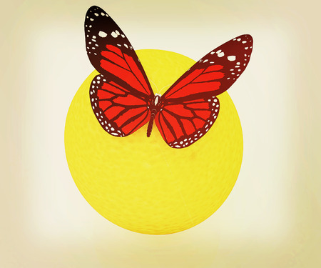 Red butterflys on a oranges on a white background . 3D illustration. Vintage style. Stock Photo