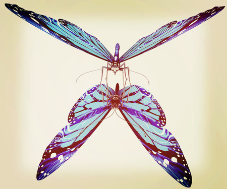 3d butterfly: Butterfly on a white background. 3D illustration. Vintage style.