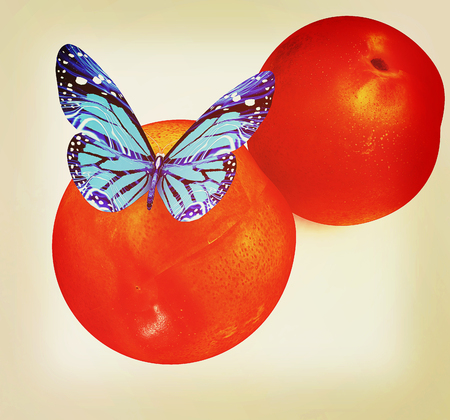 Blue butterflys on a fresh peaches on a white background . 3D illustration. Vintage style. Stock Photo