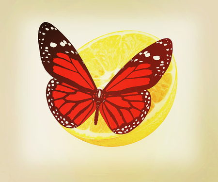 butterflys: Red butterflys on a half oranges on a white background . 3D illustration. Vintage style. Stock Photo