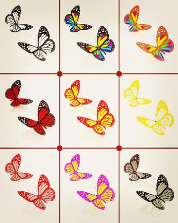 admiral: Butterflies botany set. 3D illustration. Vintage style. Stock Photo