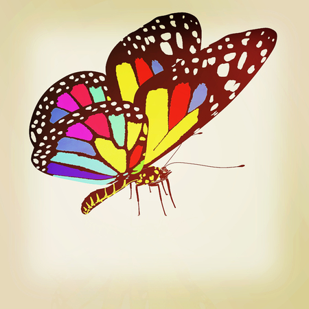 colorful butterfly. 3D illustration. Vintage style. Stock Photo