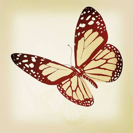 Black and white beautiful butterfly. High quality rendering. 3D illustration. Vintage style. Stock Photo